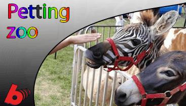 Petting Zoo Rentals