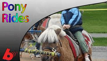 Pony Ride Rentals Nashville