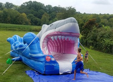 Shark Water Slide Near Me