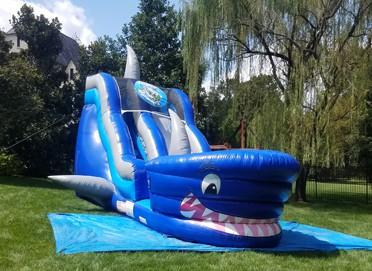 Shark Slide